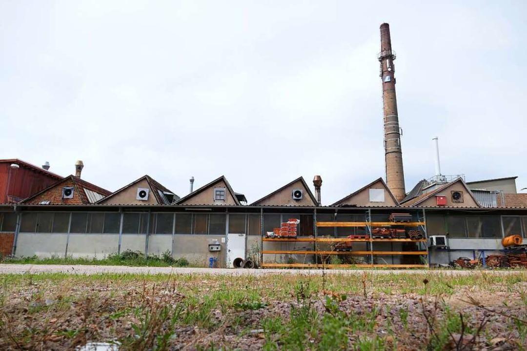 Statt der alten Fabrikbauten auf dem L...rbebetriebe in Holzbauweise entstehen.  | Foto: Peter Gerigk