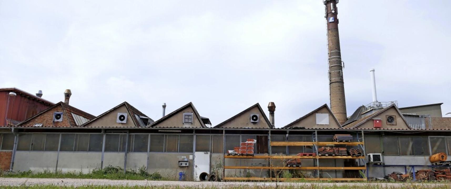 Statt der alten Fabrikbauten auf dem L...bebetriebe in Holzbauweise entstehen.     Foto: Peter Gerigk