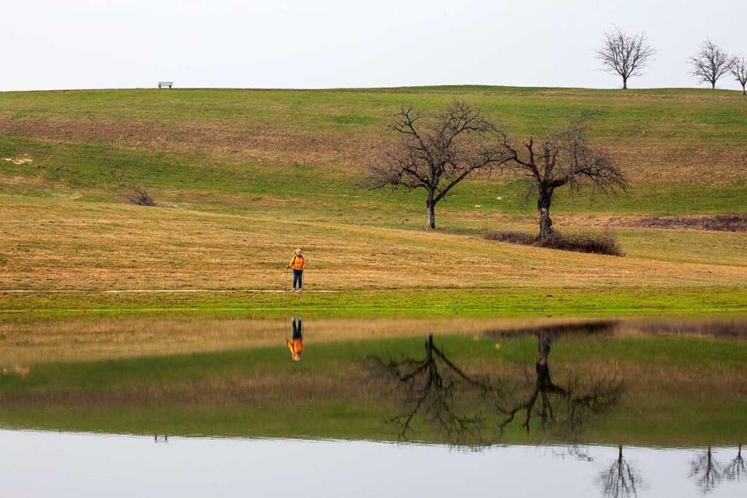 Der Eichener See entsteht, wenn aufgru..., dass Wasser an die Oberfläche tritt.    Foto: Philipp von Ditfurth (dpa)