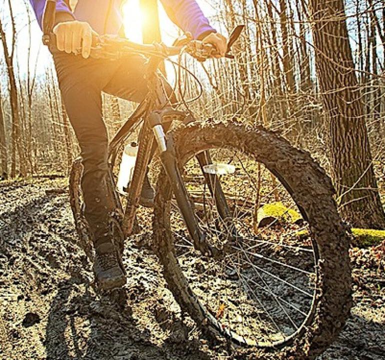 Nicht in Weil: MTB-Trail im Wald  | Foto: Repro: BZ
