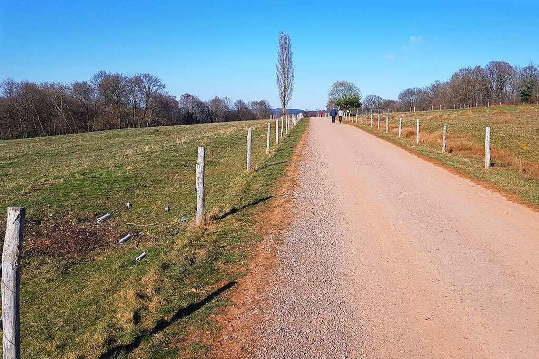 Der Langenhard ist bei Spaziergängern sehr beliebt.  | Foto: Christian Kramberg