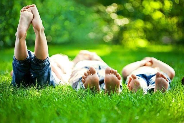 Ein Naturkindergarten, damit Kinder Natur erleben können