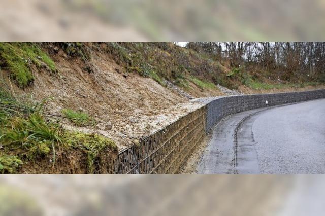 Besserer Schutz vor Erdrutschen