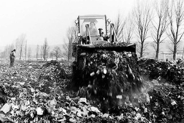 Der Emmendinger Müllberg wurde mit einer Schichte Erde überschüttet