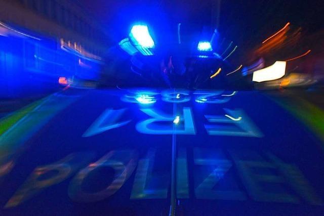 Autofahrer übersieht in Breisach Kübel und Warnbaken
