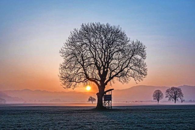 Ein Morgen bei Kirchzarten wie im Märchen