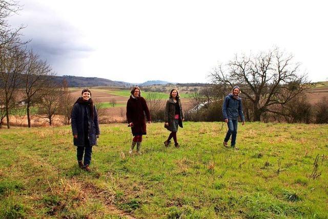Solidarische Landwirtschaft in Ettenheim hat ab November einen Acker