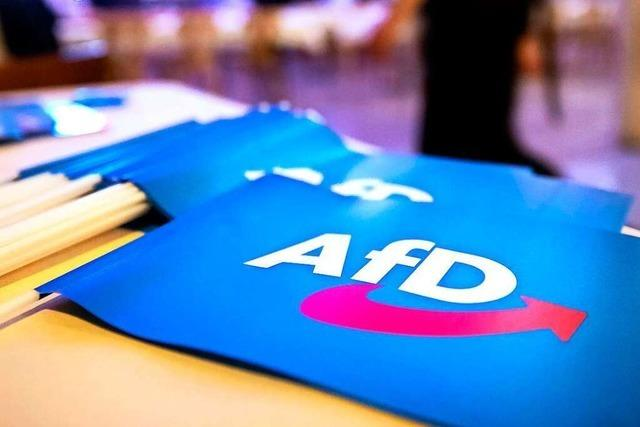 AfD streitet nach Landtagswahl-Schlappe um Ausrichtung der Partei