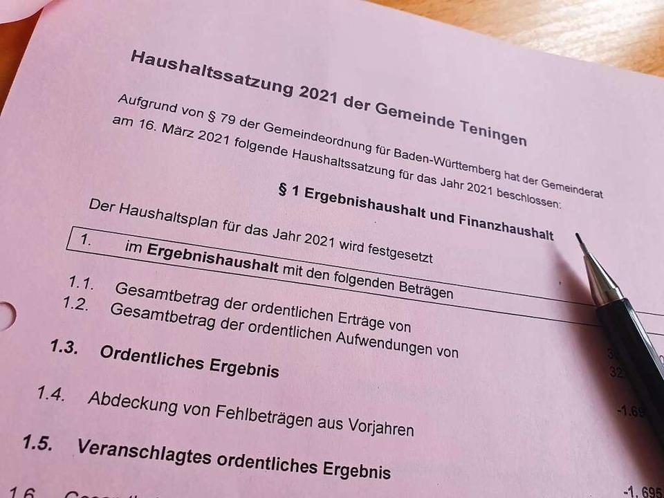 Mehrheitlich stimmte der Teninger Geme... mit 19 zu vier für den Haushalt 2021.  | Foto: Michael Sträter