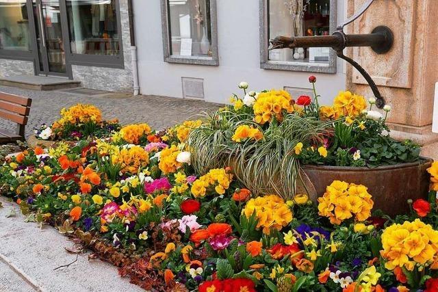 In Schopfheim gibt es viele Ideen für die trockengelegten Brunnen