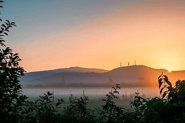 Goldene Morgenstunden in Freiburg