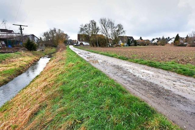 Baugebiet in Freiburg-Waltershofen verzögert sich, weil Gutachten fehlt