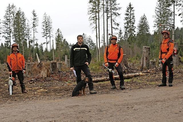 Ziel ist ein klimastabiler Wald