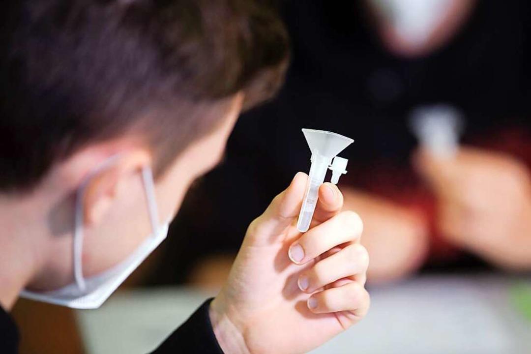 Für Schüler gibt es Spuck- oder sogenannte Lolly-Tests.  | Foto: Federico Gambarini (dpa)
