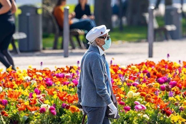 Kann starker Pollenflug das Corona-Risiko erhöhen?