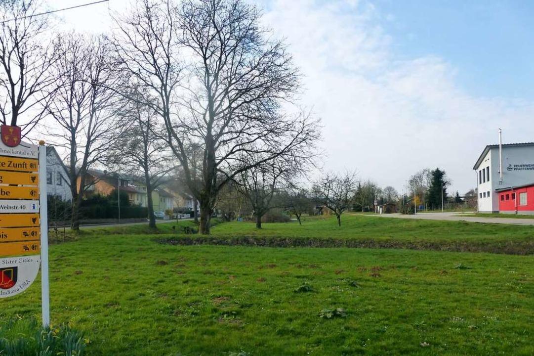 Das Gelände zwischen dem Feuerwehrhaus...ße (links) könnte bald bebaut werden.   | Foto: Andrea Gallien