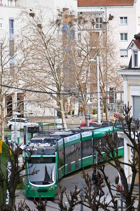 Die Tram 8 in Weil  | Foto: Victoria Langelott