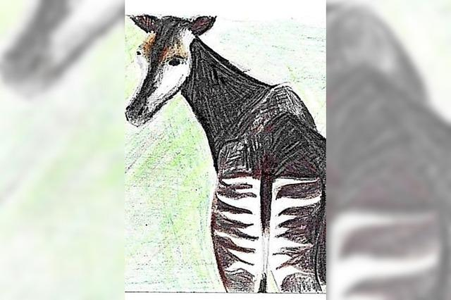 Von hinten wie ein Zebra