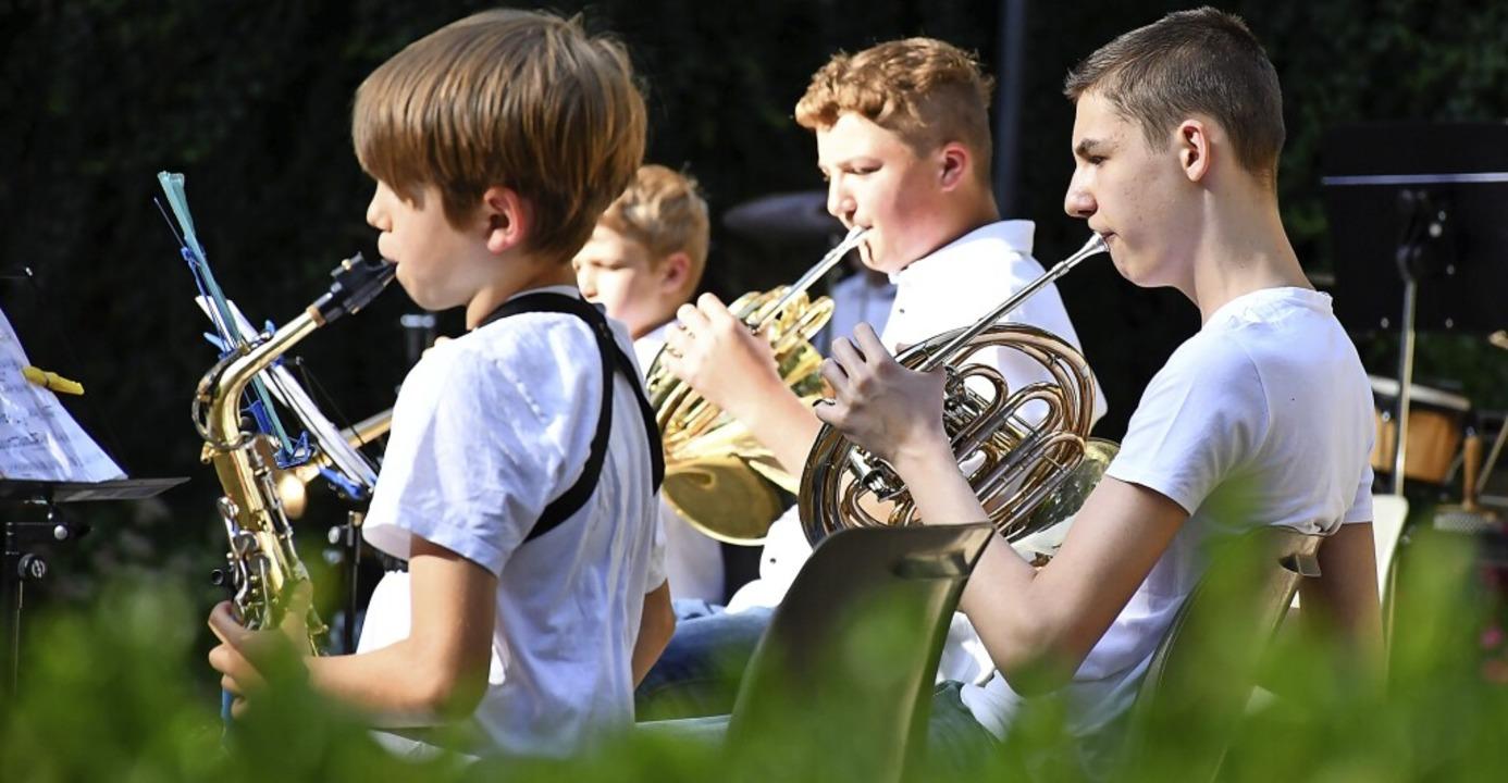 Das Jugendorchester im Juli 2020  bei der Sommerserenade im Rosenfelspark   | Foto: Barbara Ruda