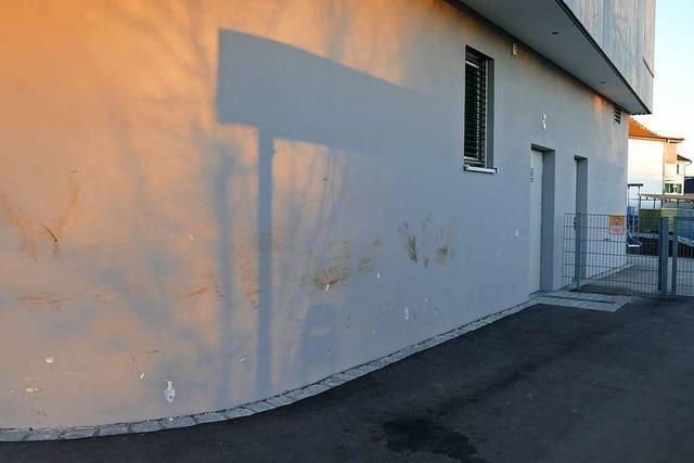 Unbekannte haben die Fassade der Kita Löwenzahn in Grenzach-Wyhlen beschädigt