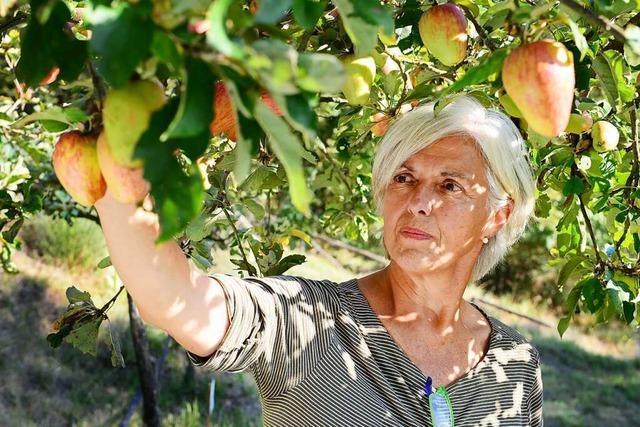 Eine Obstarchäologin sucht in Italien nach dem verlorenen Apfel
