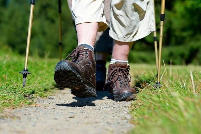 50 Leichte Wanderungen im Schwarzwald