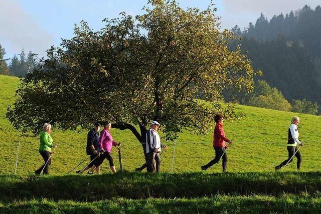 Nordic Walking ist ein gesunder Sport für Körper und Geist