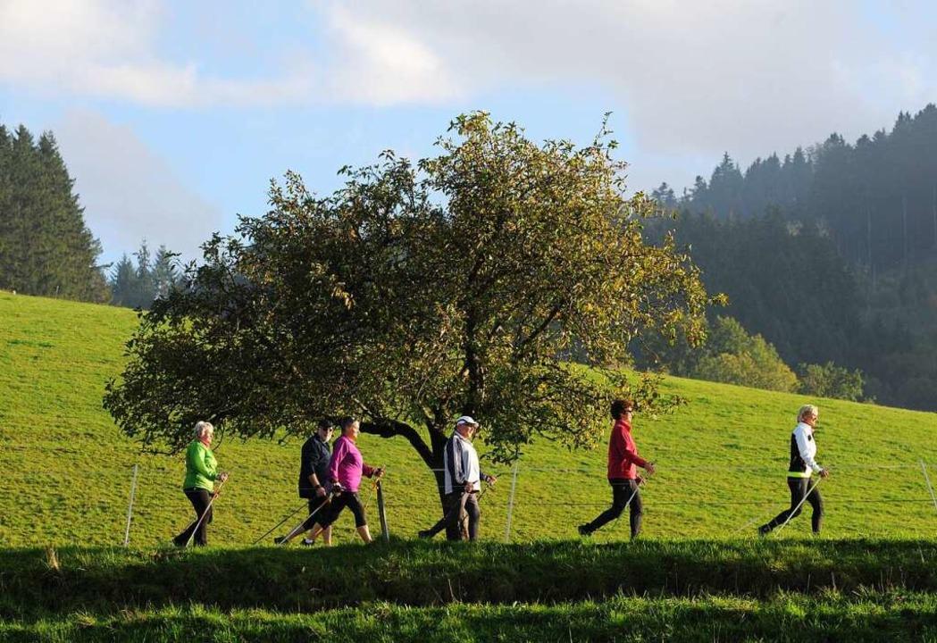 Raus aus dem Haus und ab in die Natur ... ist ein idealer Sport für jeden Tag.     Foto: Patrick Seeger