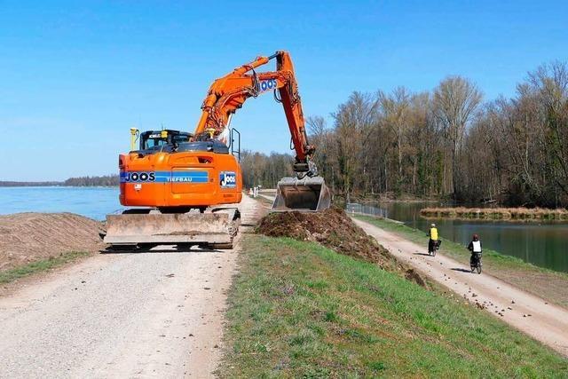 Bau des Hochwasserrückhalteraums Breisach/Burkheim beginnt