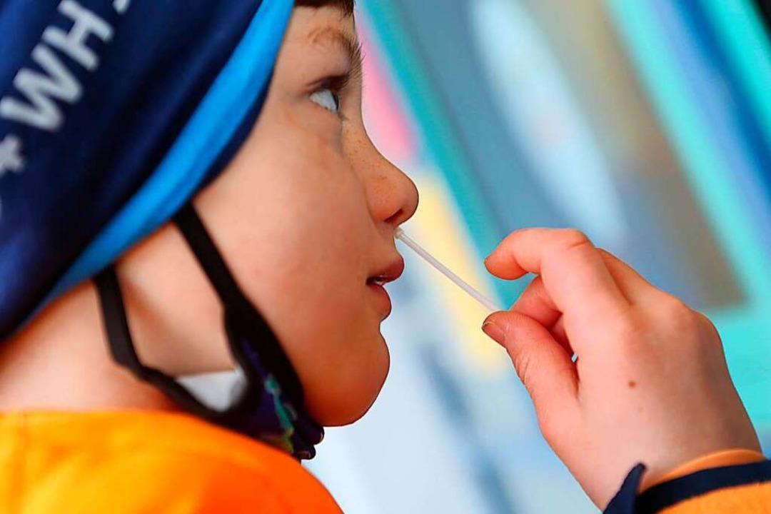 Ein Schüler macht einen vorderen Nasenabstrich für einen Corona-Schnelltest.  | Foto: Matthias Bein (dpa)