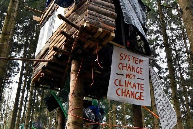 15.000 Bäume sollen in einem Wald einer Kiesgrube weichen
