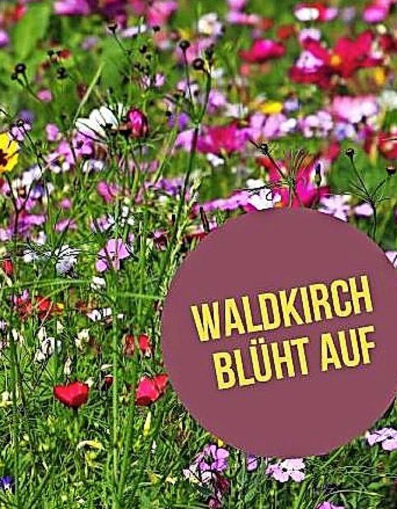 Unter diesem Motto  gibt es heute  im ... 12 bis 17 Uhr  eine Frühlingsaktion.   | Foto: Stadt Waldkirch