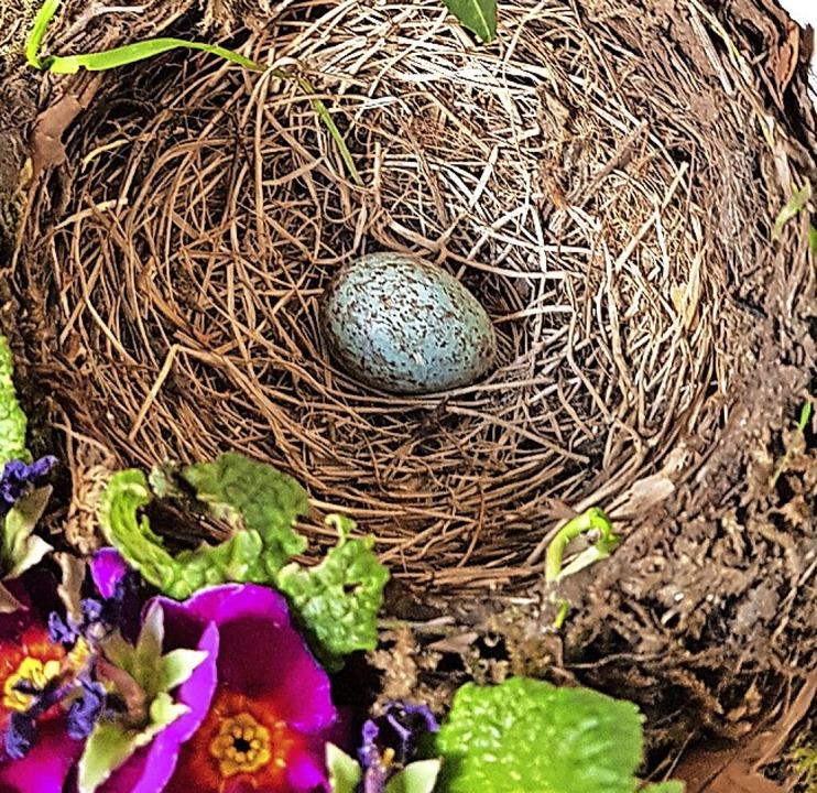Ein erstes Ei im Nest  | Foto: Gerhard Walser