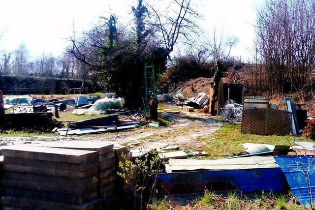 Der Lahrer Schutterlindenberg wird durch Müll und illegale Hütten bedroht