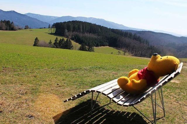 Traumhaft: Ein Sonnenplatz am Bäreneckle