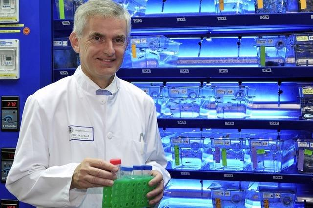 Gerd Walz von der Uniklinik betreibt Detektivarbeit an der Niere
