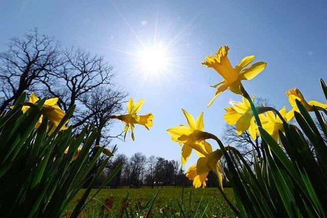 Am Ostersonntag wird es sonnig und warm – dann Schnee im Südwesten