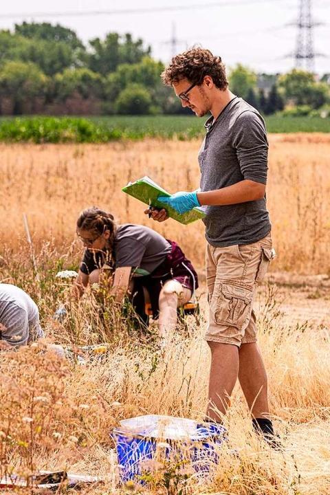 Wissenschaftler werten Grünlandproben aus.  | Foto: André Künzelmann