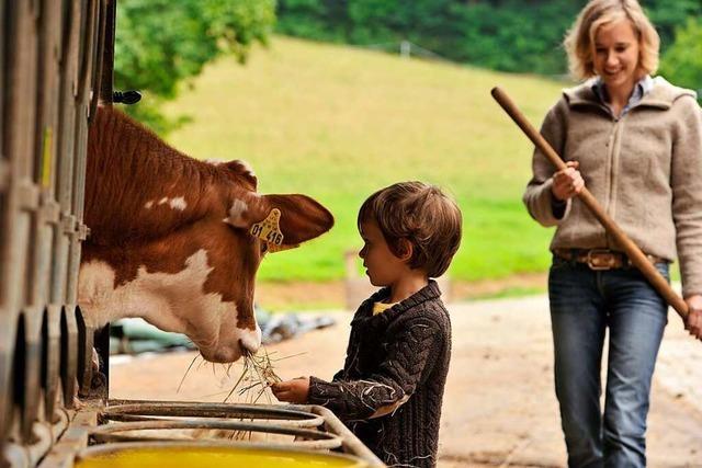 Ferienbauernhöfe bieten für Familien eine Pause vom Corona-Alltag