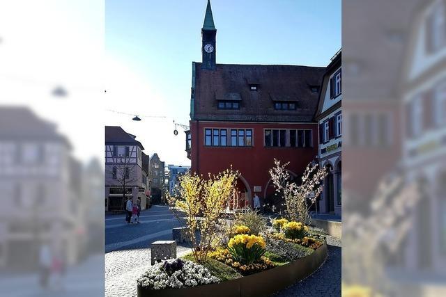 URTEILSPLATZ: Click and Glück