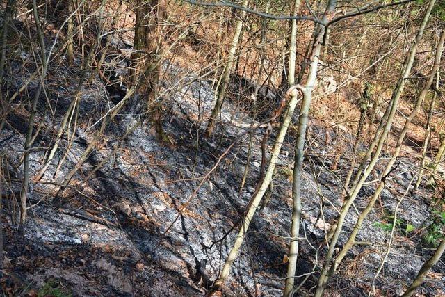 Polizei geht bei Flächenbränden in Kandern von Brandstiftung aus
