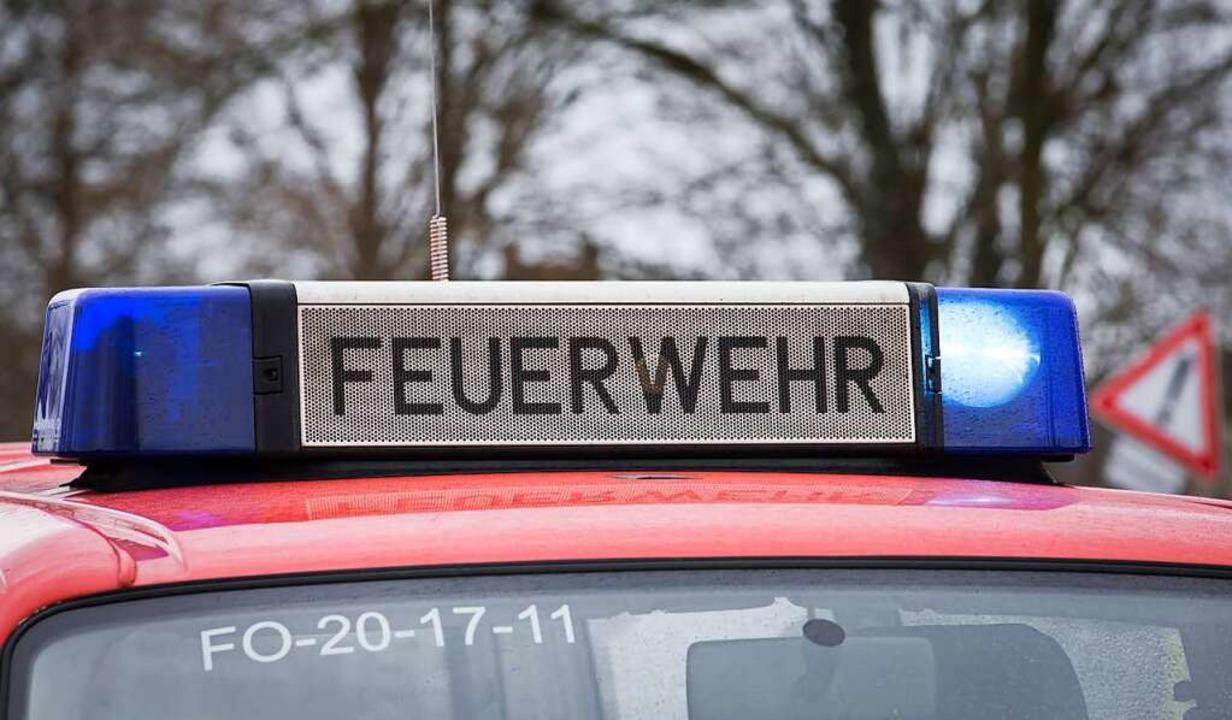 Die Feuerwehrleute aus St. Blasien hat...nd in Unterkutterau schnell gelöscht.   | Foto: Friso Gentsch (dpa)