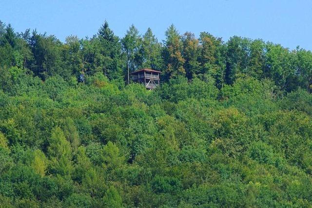Der Eigenturm ist der jüngste Aussichtsturm am Hochrhein