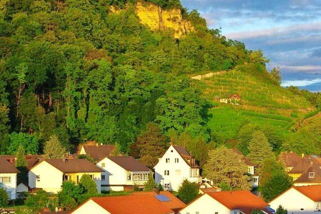 Am Grenzacher Hornfelsen gibt's einen schönen Blick auf das Leben unserer Nachbarn