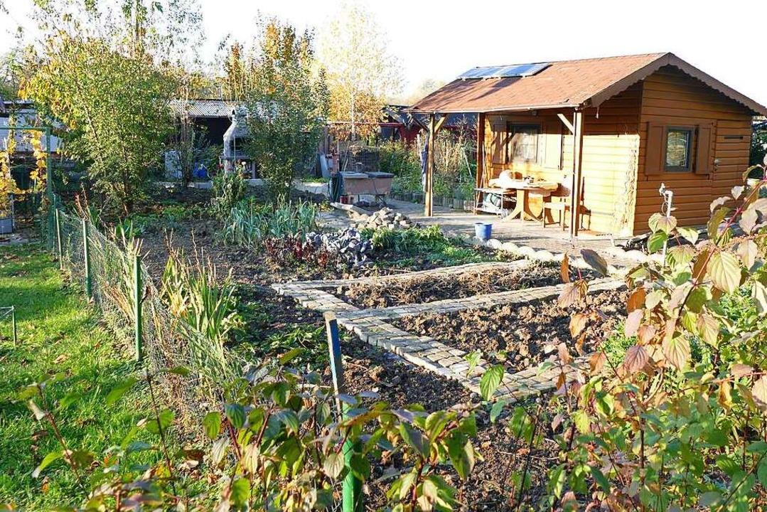 Die Stadt möchte die Kleingartenanlage...e einbinden und richtet sie dafür her.  | Foto: Susanne Ehmann