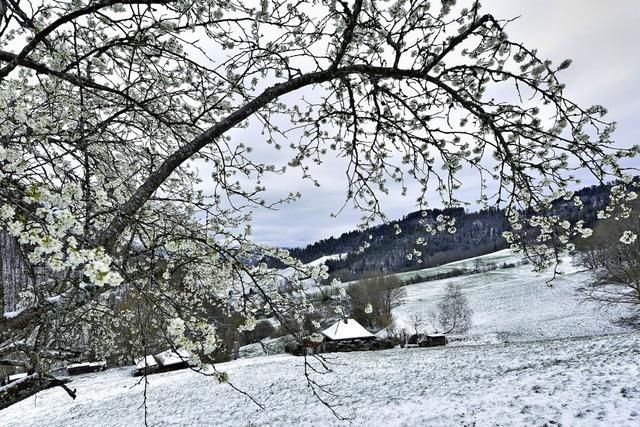 Winter und Frühling im Doppelpack