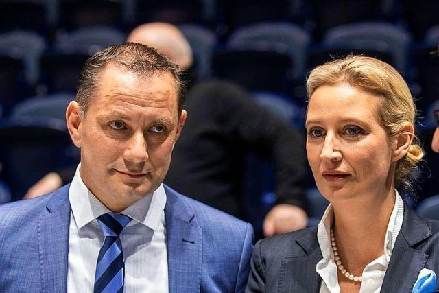 Hat die AfD bald einen Spitzenkandidaten für die Bundestagswahl?