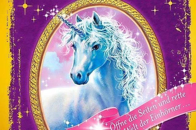 Sternenschweif, das geheime Zauberbuch