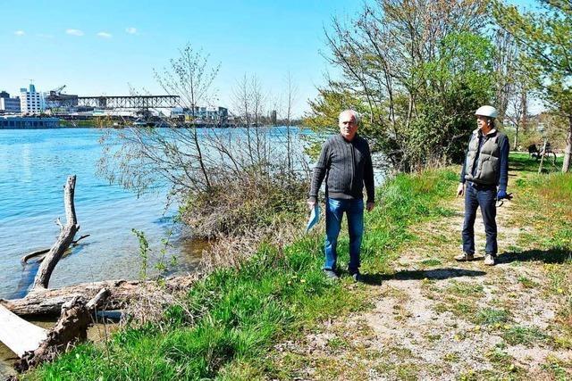 Die illegale Rodung am Rhein bei Grenzach-Wyhlen hat keine Konsequenzen
