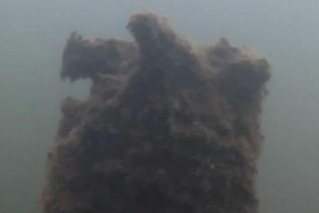 Jugendliche finden rätselhaftes Objekt im Schwanenweiher in Breisach